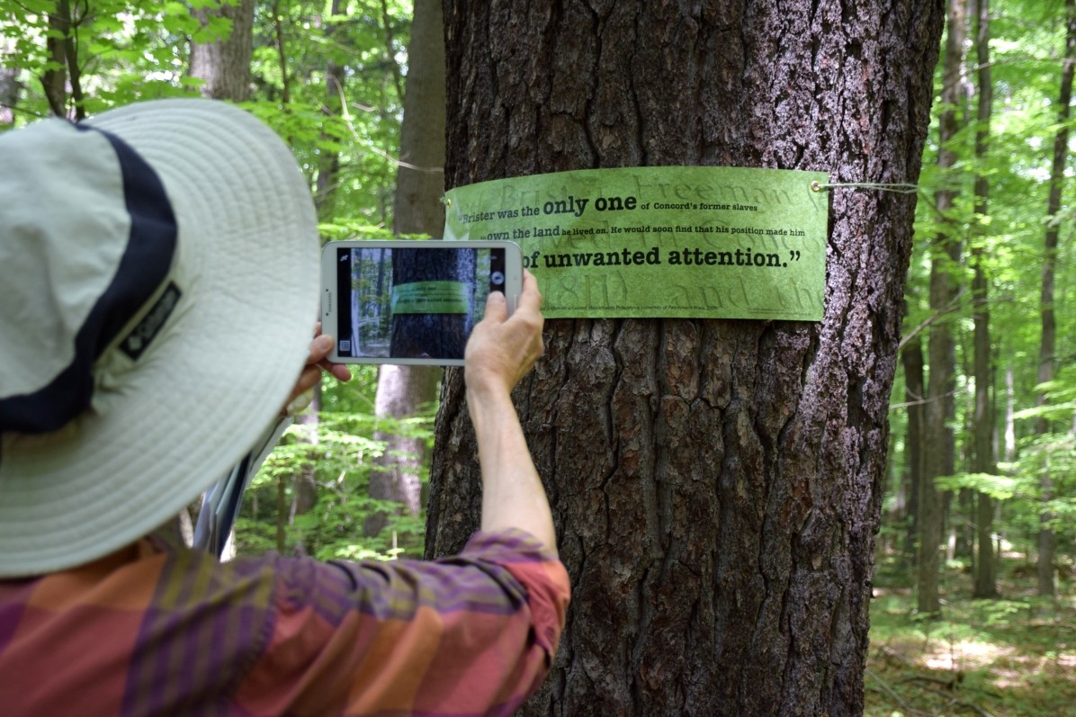 Woman take digital photo of art banner on tree