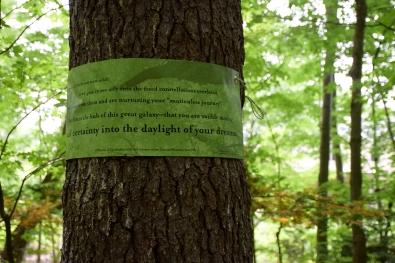 daylightdreams_DSC_0103