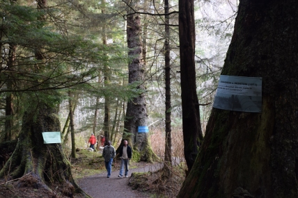 People walking on the trail in Sitka
