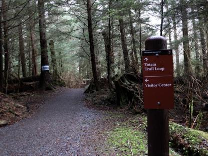 Prints along the trail