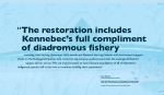 """""""The restoration includes Kennebec's full compliment of diadromous fishery including river herring (American shad, alewife and blueback herring), Atlantic and shortnosed sturgeon (both on the Endangered Species list), American eel, lamprey, anadromous smelt, the endangered Atlantic salmon and on and on. We are truly fortunate to have remnant populations of all of Kennebec's indigenous species still in the river to continue building their populations."""" — Steve Brooke Colby Graduate Who Stayed in Maine Drawing of Atlantic Salmon provided courtesy of the Maine Department of Marine Resources Recreational Fisheries program and the Maine Outdoor Heritage Fund. Map: USGS Streamer, retrieved, January 2018. WordWrap 2018: Swimming Upstream, by Lisa Link for Waterville Creates!"""