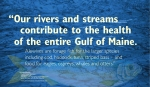 """""""Our rivers and streams contribute to the health of the entire Gulf of Maine. Alewives are forage fish for the larger species including cod, haddock, tuna, striped bass – and food for eagles, ospreys, whales and otters."""" —Landis Hudson Executive Director Maine Rivers http://mainerivers.org/ Drawing of Alewife provided courtesy of the Maine Department of Marine Resources Recreational Fisheries program and the Maine Outdoor Heritage Fund. WordWrap 2018: Swimming Upstream, by Lisa Link for Waterville Creates!"""