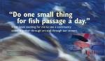 """""""Do one small thing for fish passage a day."""" It has been exciting for me to see a community come together through art and through our stream. —Upstream Founder and artist activist https://www.facebook.com/alewivesupstreamcobbosseecontee Fish images retrieved from Upstream Facebook page, 2018. WordWrap 2018: Swimming Upstream, by Lisa Link for Waterville Creates!"""