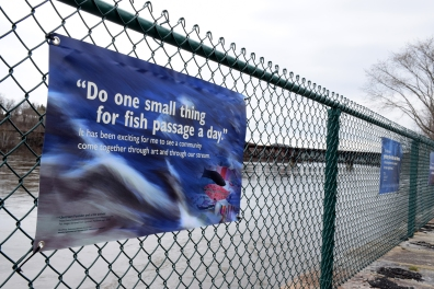 """Do one small thing for fish passage a day"" quote on banner."