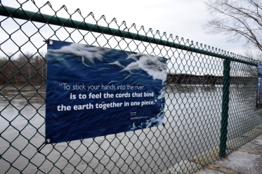 To stick your hands into the rivers is to feel the cords that bind the earth together in one piece. quote on banner.