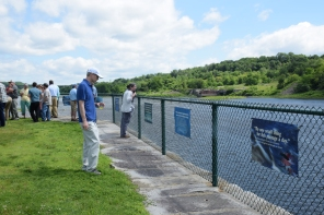 man looks at banners at Mill Park